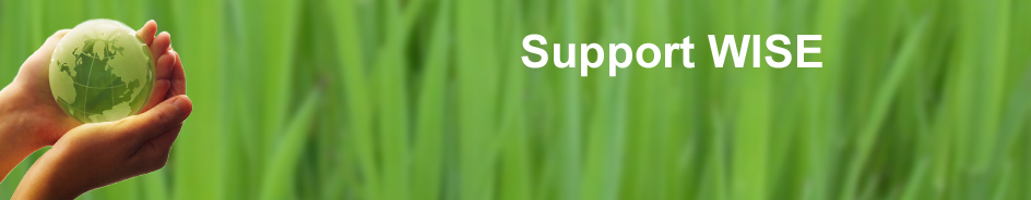 support-wise-banner1 copy.jpg